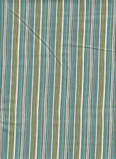 Gypsy by Stepping Stones: stripe